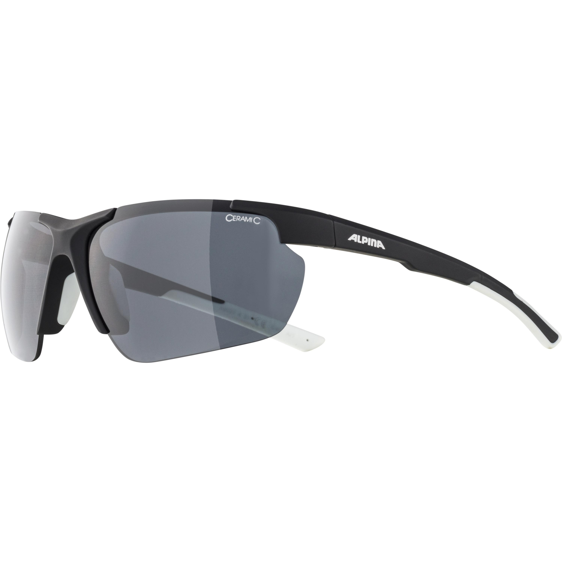 Image of Alpina Defey HR Glasses - black matt-white / black