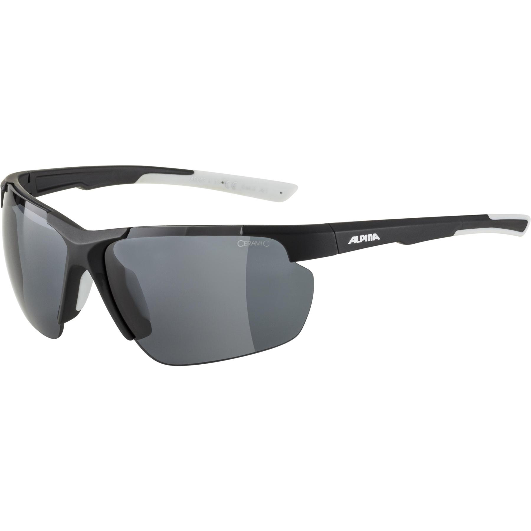 Alpina Defey HR Glasses - black matt-white / black