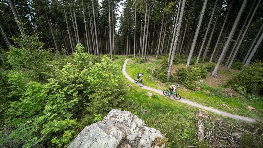 Mountainbiken im Erzgebirgigen Dunkelwald