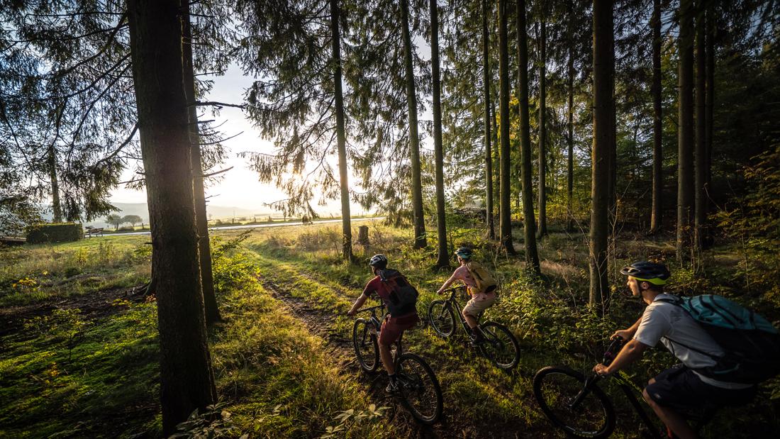Vielfältige MTB Trails durch die belgischen Ardennen