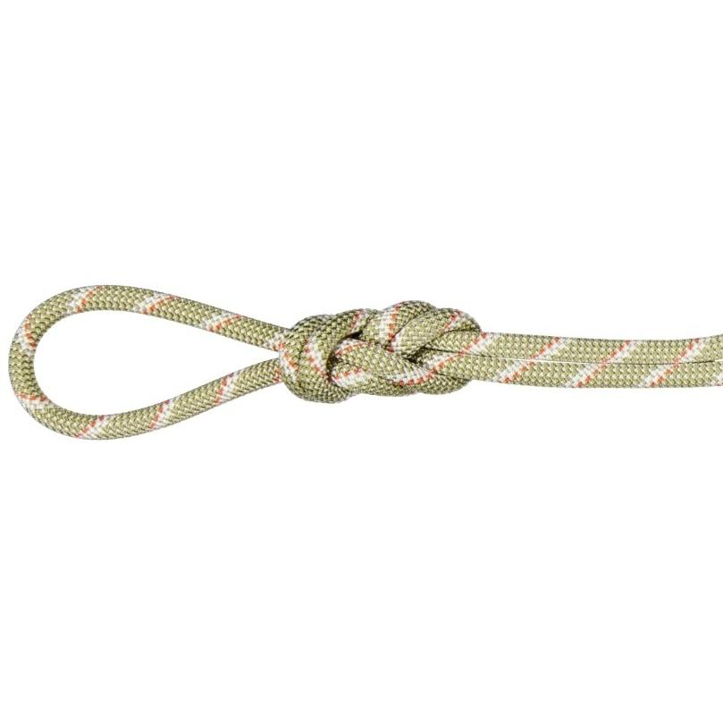 Produktbild von Mammut 8.0 Alpine Classic Rope Kletterseil - 50 m - Boa - White