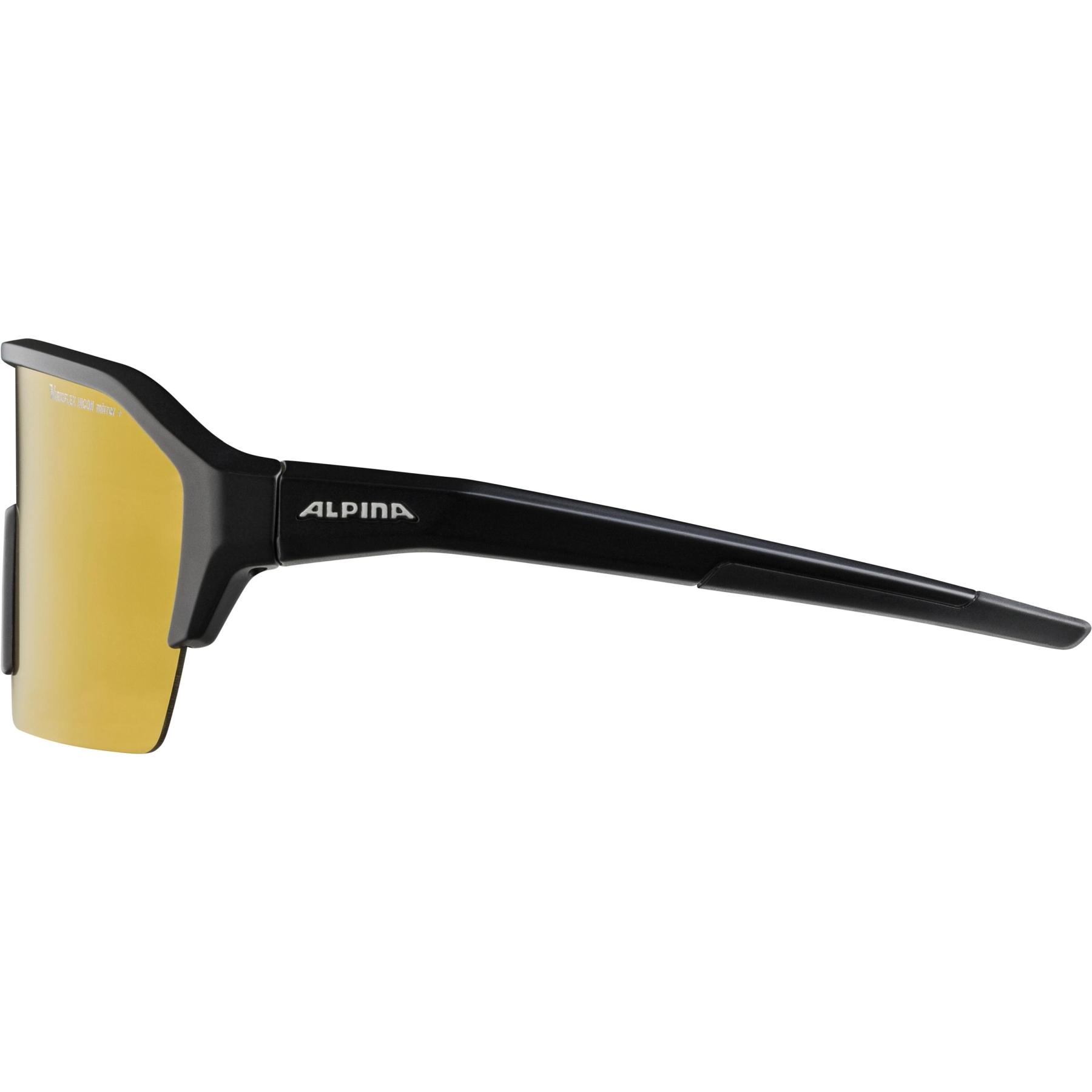 Image of Alpina Ram HR HVLM+ Glasses - black matt / Hicon Varioflex silver mirror