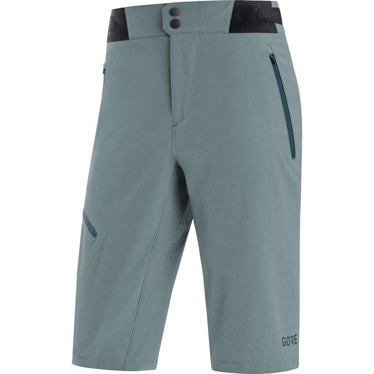 GORE Wear C5 Cycling Shorts - nordic blue AP00