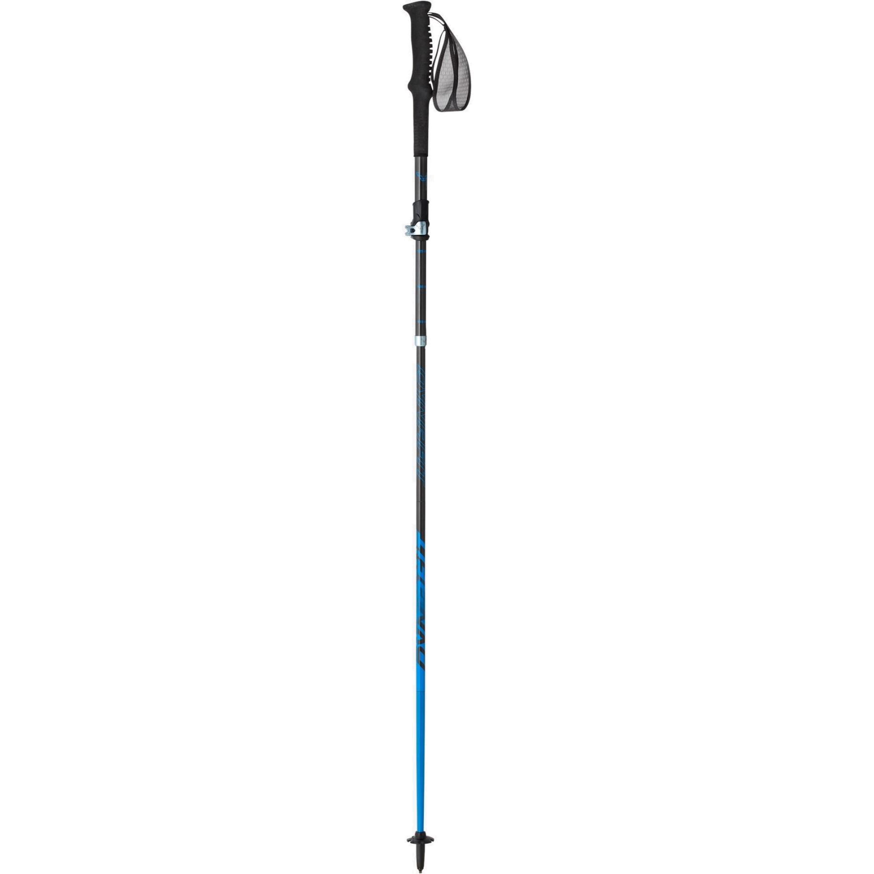 Dynafit Ultra Pro Pole - Carbon/Methyl Blue