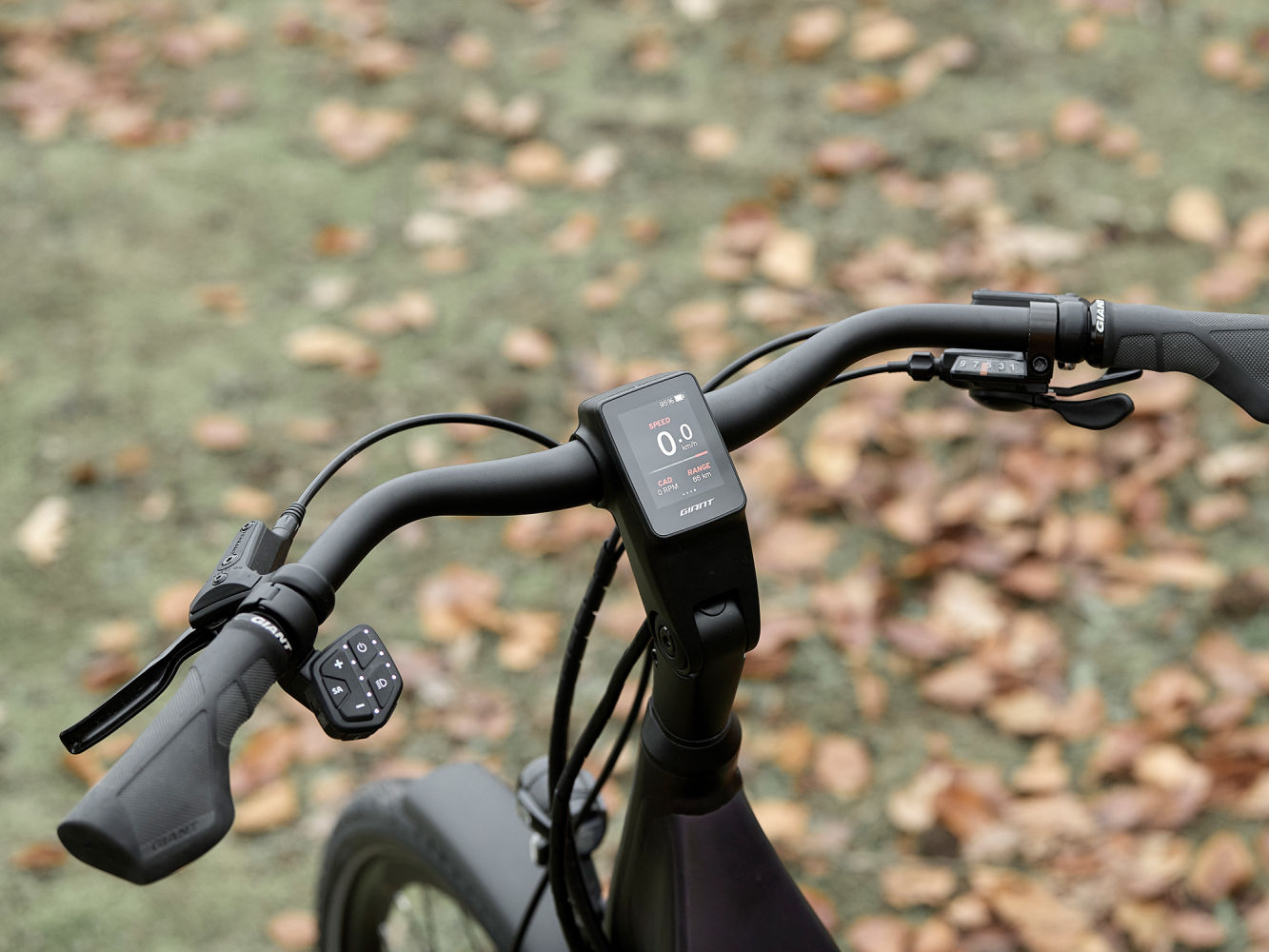 Bild von Giant RideControl Ergo 2 SG für Flat & City Lenker - 22,2 mm - 700 mm - 245MFLRMCT