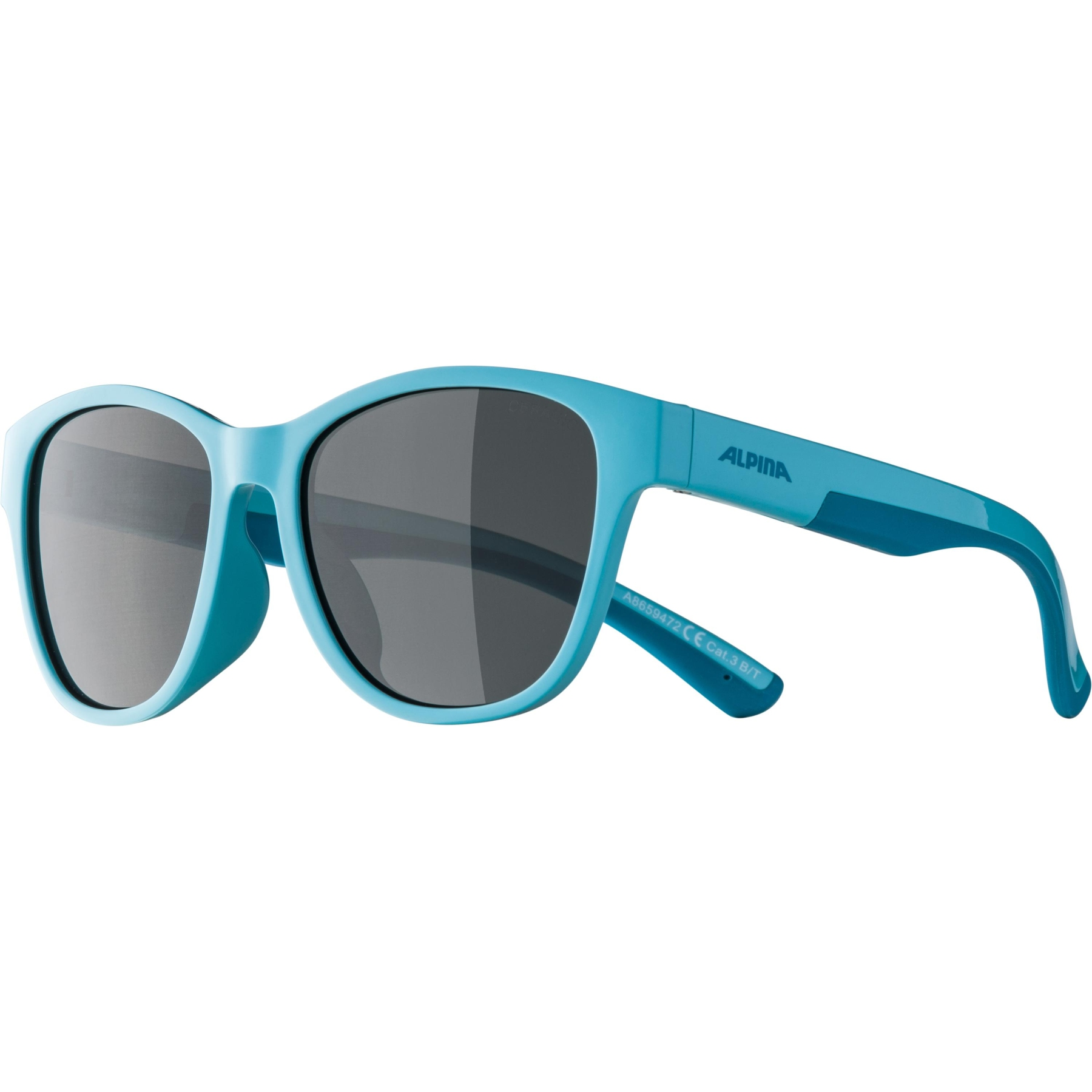 Image of Alpina Flexxy Cool Kids II Glasses - tourquise / black